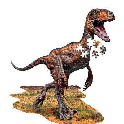 Raptor puzzle